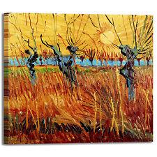 Van Gogh salici al tramonto design quadro stampa tela dipinto telaio arredo casa