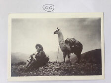 Peru Unposted Single Collectable South American Postcards
