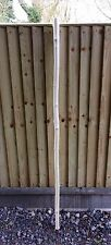 Solid White Ash Staff, Ash, Sturdy, Each One Is Unique, Walking, Hiking, NEW