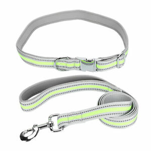 Reflective Dog Traction Collars Leashes Insert Buckle Pet Pulling Rope Belt HOT