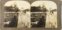 Italia Roma Vaticano Le Jardins Del Pape, Foto Stereo Vintage Analogica PL62L2