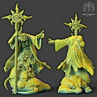 Chaos Sorcerer Blighted 32mm Fantasy Miniature RPG Warhammer D&D Nurgle AoS