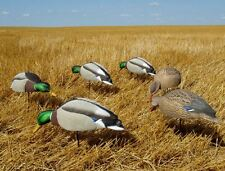 AVERY GREENHEAD GEAR GHG MALLARD FEEDER 5/8 SHELL DUCK DECOYS 6 NEW!