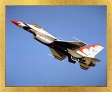 Thunderbird Airplane Aviation Wall Golden Framed Picture Art Print (18x22)