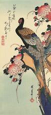 Pheasant and Chrysanthemums Hiroshige Woodblock Print