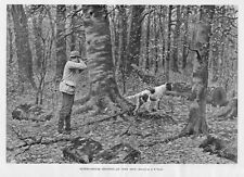 HUNTING RUFFED GROUSE SHOOTING, AN OPEN SHOT BY A. B. FROST, DOG POINTER, HUNT