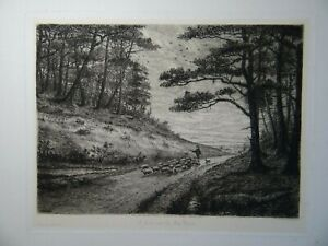 Walter William Burgess - A Lane near the New Forest Etching, 1890