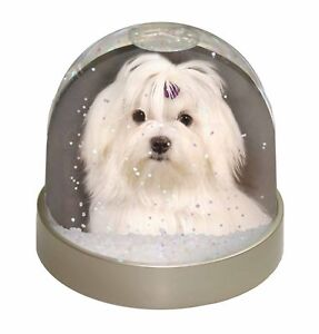 AD-BF3GL Bichon Frise Dog /'Yours Forever/' Photo Snow Globe Waterball Stocking F