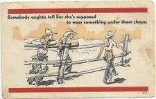 Postcard Girl Cowboy Fence Risque Comic