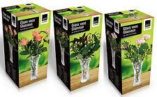 19.5cm Traditional Glass Vase Clear Glass Flower Vase Table Decoration Vase