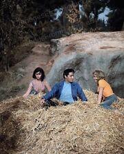 8x10 Print Elvis Presley Pamela Austin Kissin Cousins 1964 #EP1