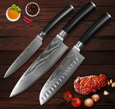 Knife Set 67 Layers Damascus Steel Blade Chef Utility Boning Knives Slicing Pair