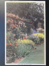 FLOWER BORDER AND ROSE PERGOLA Colour Scheme With Garden Flowers - Old Postcard