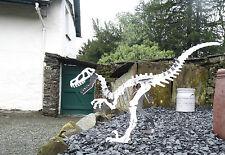 Metal Steel Velociraptor (raptor) large dinosaur kit, model, ornament, sculpture