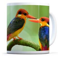 Lovely Kingfisher Bird - Drinks Mug Cup Kitchen Birthday Office Fun Gift #16198