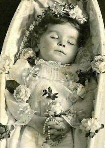 Antique Post Mortem Child Casket Photo 104b Odd Strange & Bizarre