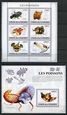 Comoros Comores 2009 MNH Fish 6v M/S 1v S/S Poissons Fishes Marine Stamps
