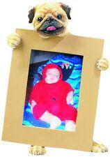 Pug Frame Dog Picture Photo Frame