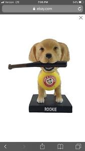 2019 Trenton Thunder Bat Dog Rookie SGA Bobblehead 5/21 Yankees Cute