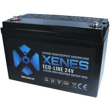 XENES ECO-Line 24V LiFePO4 50Ah 100Ah Smart-BMS Lithium Versorgungs Batterie