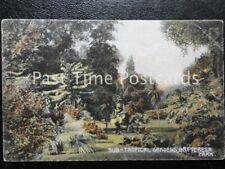 c1908 - BATTERSEA PARK Sub Tropical Gardens