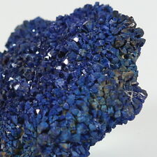 Azurite Crystal Mineral Cluster 2 oz. from Blue Jay Claim Utah USA