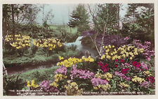 Barrier Garden Daily Mail Ideal Home Exhibition 1933 LONDON England Payne RPPC