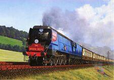 Devon Belle Pullman BR Blue Spamcan Orient Lines Waterloo Ilfracombe blank card