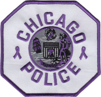 """CHICAGO POLICE STAR 3/"""" DECAL STICKER 1960/'s Star Holographic"""