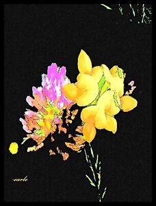 "Earle B. Weiss Fine Art Print 9"" x 13"" - SHERBET BLOOMS"