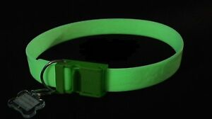 Davis FurEver Brite Glow In The Dark Pet Safety Collar For Small to Medium Dogs
