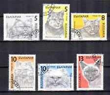Chats Bulgarie (24) série complète de 6 timbres oblitérés
