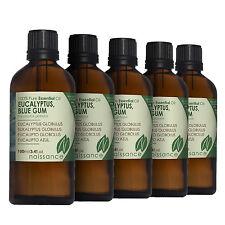 Naissance Wholesale Eucalyptus Blue Gum Essential Oil 500ml (5 x 100ml)