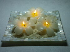 Mother of Pearl Frangipani Candle Set  Tray w 3 Frangipani Shaped Candles NEW