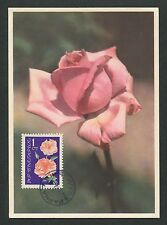 BULGARIA MK 1964 FLORA ROSEN ROSE ROSES MAXIMUMKARTE CARTE MAXIMUM CARD MC d6326