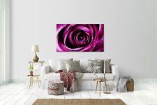 Wandtattoo Wandsticker Aufkleber Rose Lila Grösse: 120 x 70 cm