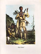VINTAGE PRINT of 1830's NATIVE AMERICAN INDIAN ~ RED BIRD ~ WINNEBAGO