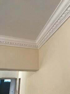 Plaster Coving. Large Egg And Dart - C3. Hand Made. Delivery Available.