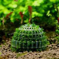 DIY Java mousse et support de plante Live Aquarium support de boule de mousse