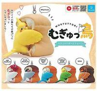 Mugyuttori Bird Mascot Ball Keychain 6 Types Set Gashapon Capsule Toy Quali