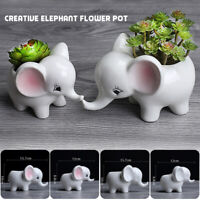 Cute Elephant Flower Pot/White Ceramic Succulent Planter Pots Home Garden Decor