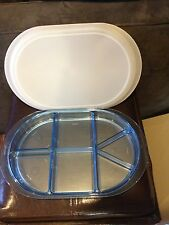 Tupperware Vintage Blue Acrylic Preludio Party Serving Tray Divided Adjustable.