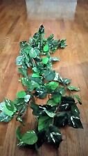 GREEN LEAF/WHITE STREAKS/ VINE/ IVY GREENERY GARLAND, 4 FT.