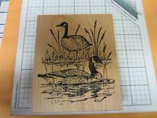 Northwood Duck Geese marsh scene outdoor sport wildlife wood mounted stamp