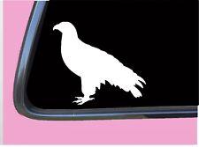 "Falcon Plain TP 623 Sticker 6"" Decal falconry hawk birds of prey equipment"