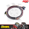 MSD Replacement Wiring Harness suit MSD Digital 6AL - MSD29774