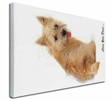 More details for cairn terrier dog 'love you dad' x-large 30