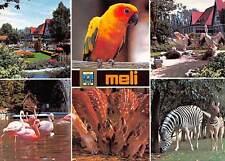 Belgium Meli Adinkerke De Panne multiviews Parrot Zebras Flamingos