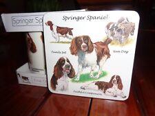 Springer Spaniel Fine China Mug BNIB With Free Coaster