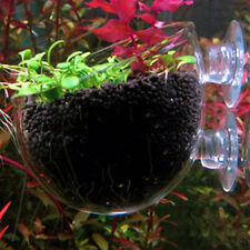 New Aquarium Fish Tank Glass Live Plant Cup Pot Crystal Red Shrimp Holder
